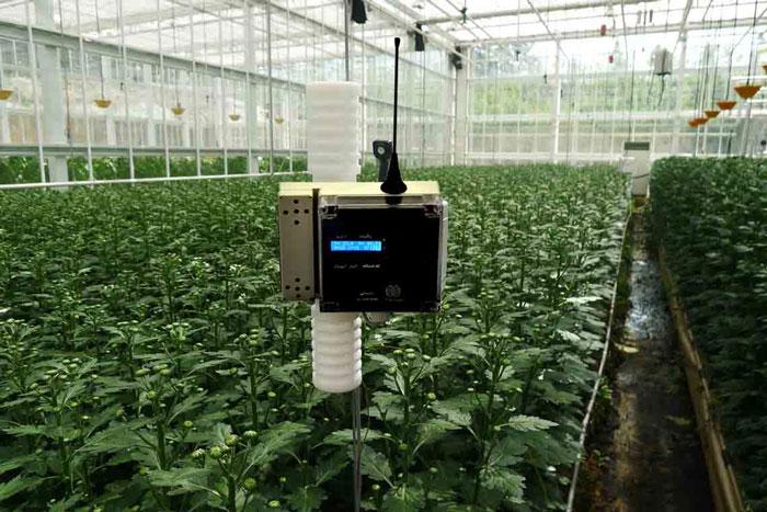 غنی سازی گلخانه با دی اکسید کربن