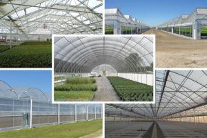 راهنمای مکان یابی ساخت گلخانه