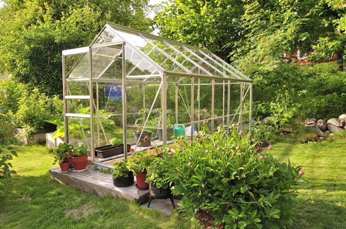 گلخانه خانگی