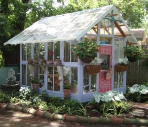 گلخانه با پنجره های بی استفاده