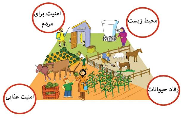 عملیات خوب کشاورزی عامل ارتقای چیست