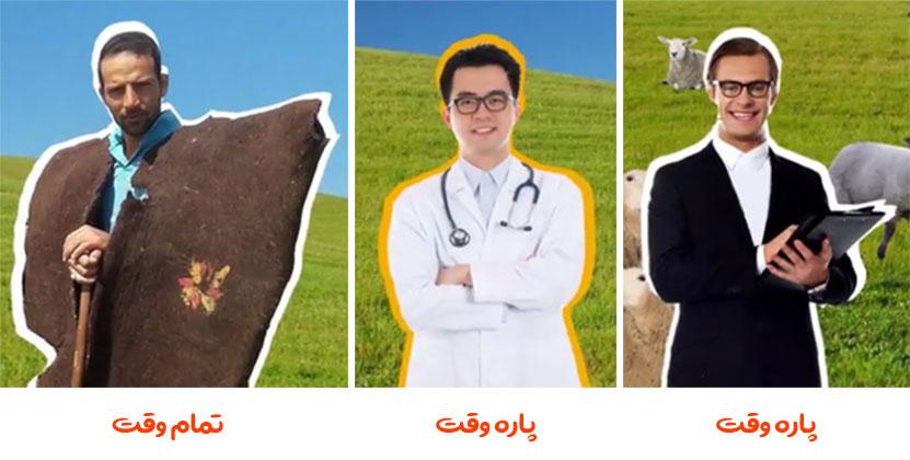 نیروهای لازم برای پرورش گوسفند