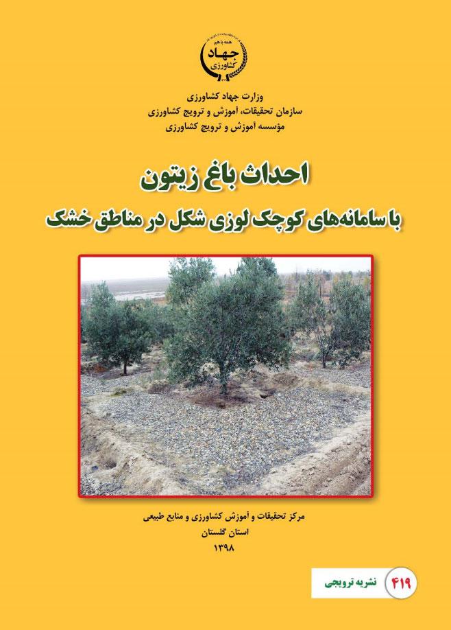 احداث باغ زیتون با سامانه های کوچک لوزی شکل در مناطق خشک