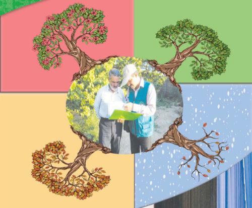 تقویم کاری کشاورزی و دامداری در 12 ماه سال