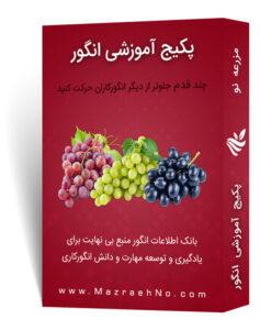 پکیج آموزشی پرورش انگور